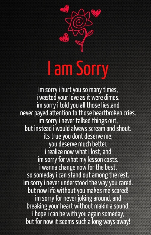 I am Sorry Love Quotes for Her