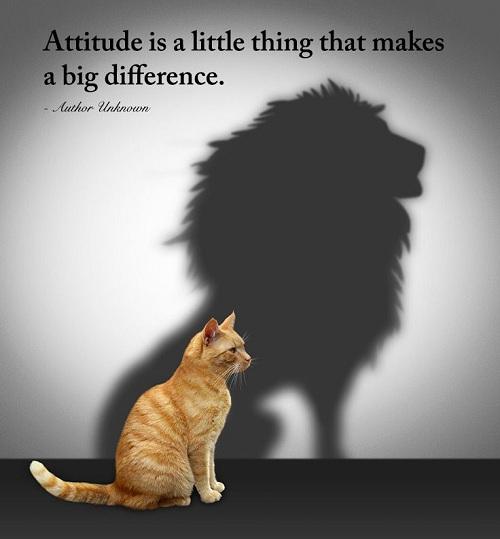 Funny Quotes on Attitude