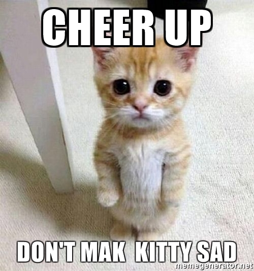 20 Cute Animal Memes To Cheer You Up Word Porn Quotes Love Quotes