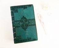greenjournal1