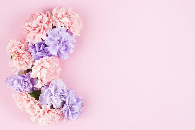 Baby Girl Floral Wallpaper خلفيات وردية اشيك خلفيات ورد رائعه احلا كلام