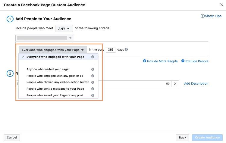 audience options for Facebook ecommerce