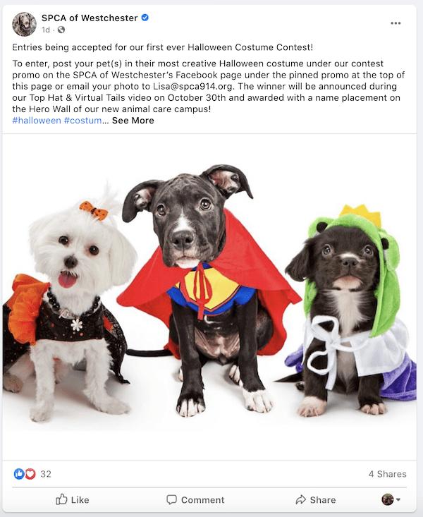 october marketing ideas costume contest