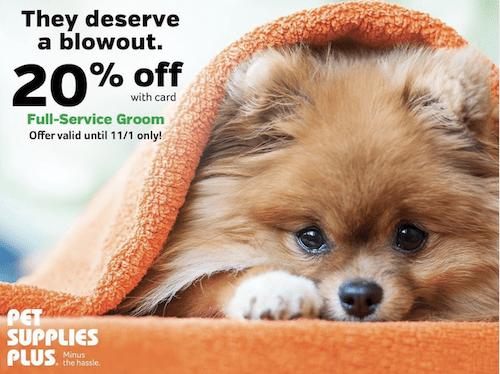 sales promotion ideas pet supplies plus 20 percent off