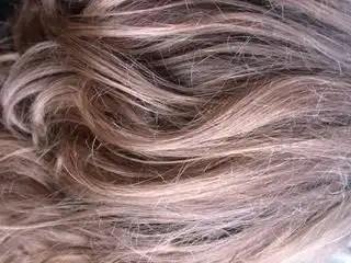 Woman_long_hair_271986_l