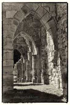 Bayham Abbey 2