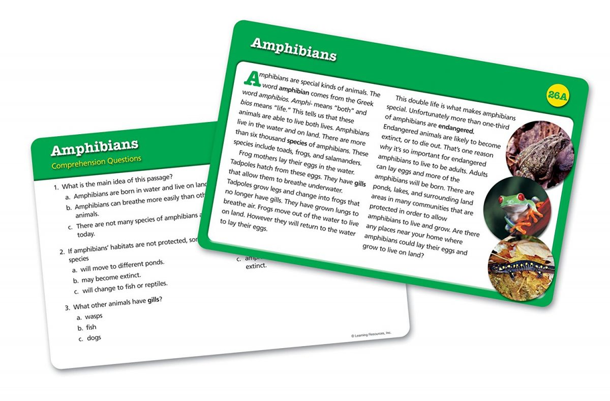 Learning Resources Reading Comprehension Cards