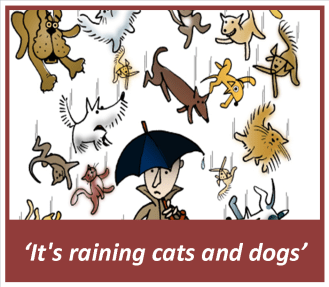 01_it's raining cats and dogs