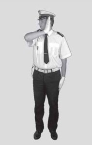 policjant 2c