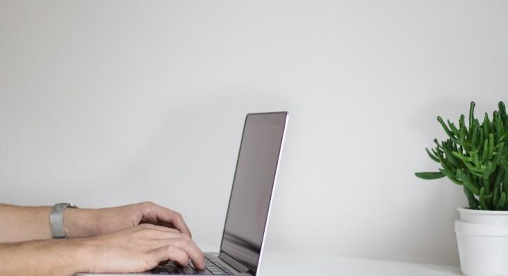 word zamosc zapisy przez internet
