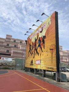 adidas101、台湾、バスケ