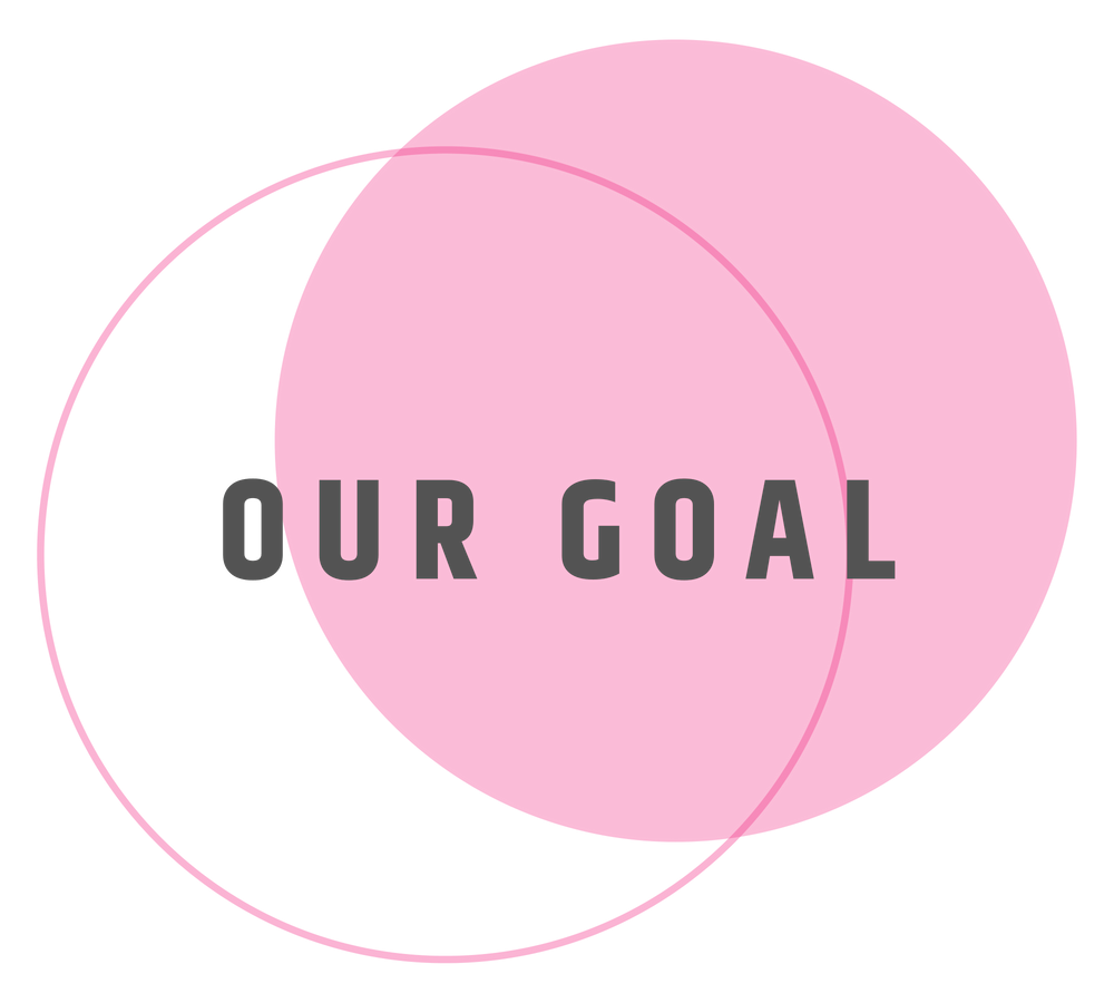 Our Goal is to boost your digital marketing strategy