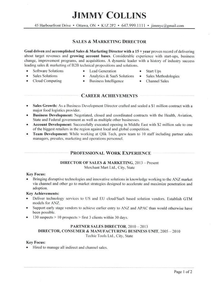 sales director resume sample
