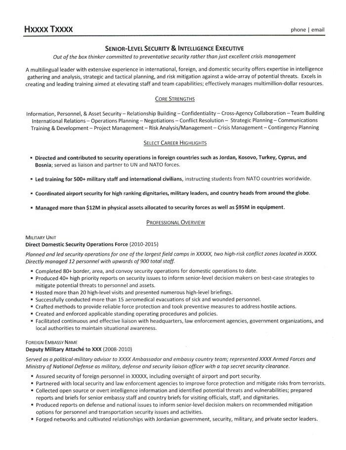 Security Executive Resume Sample