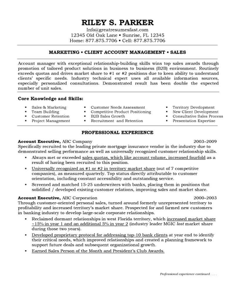 account executive resume examples examples of resumes