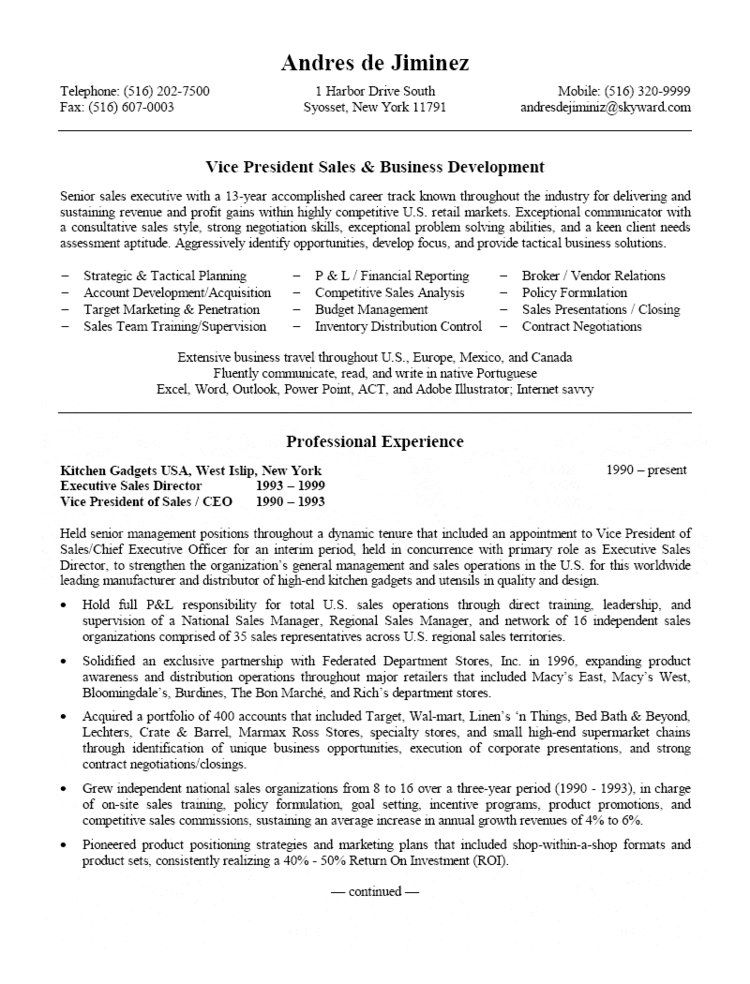 VP Sales & Business Development Resume