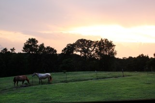 Sunset on the Pasture