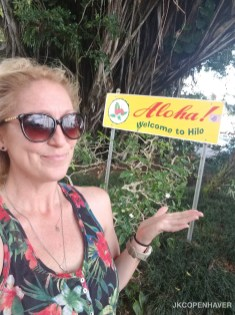 Hilo sign