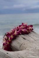 Beach Lei