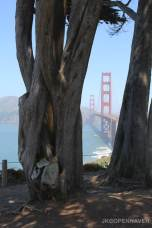 Golden Gate Glimpse