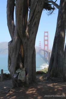 Golden Gate Glimpse