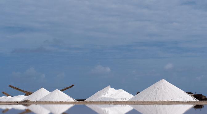 Cargill: Making Salt For a Living