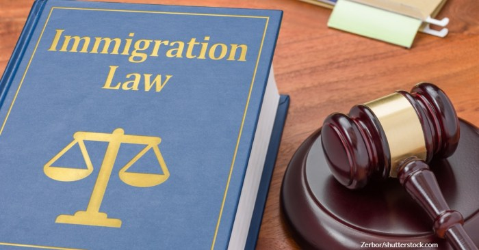 How Can Special Immigrant Juvenile Status Help Immigrant Children Obtain a Green Card?