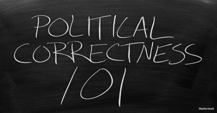 American Politics: If age and race do not predict support for political correctness, what does?