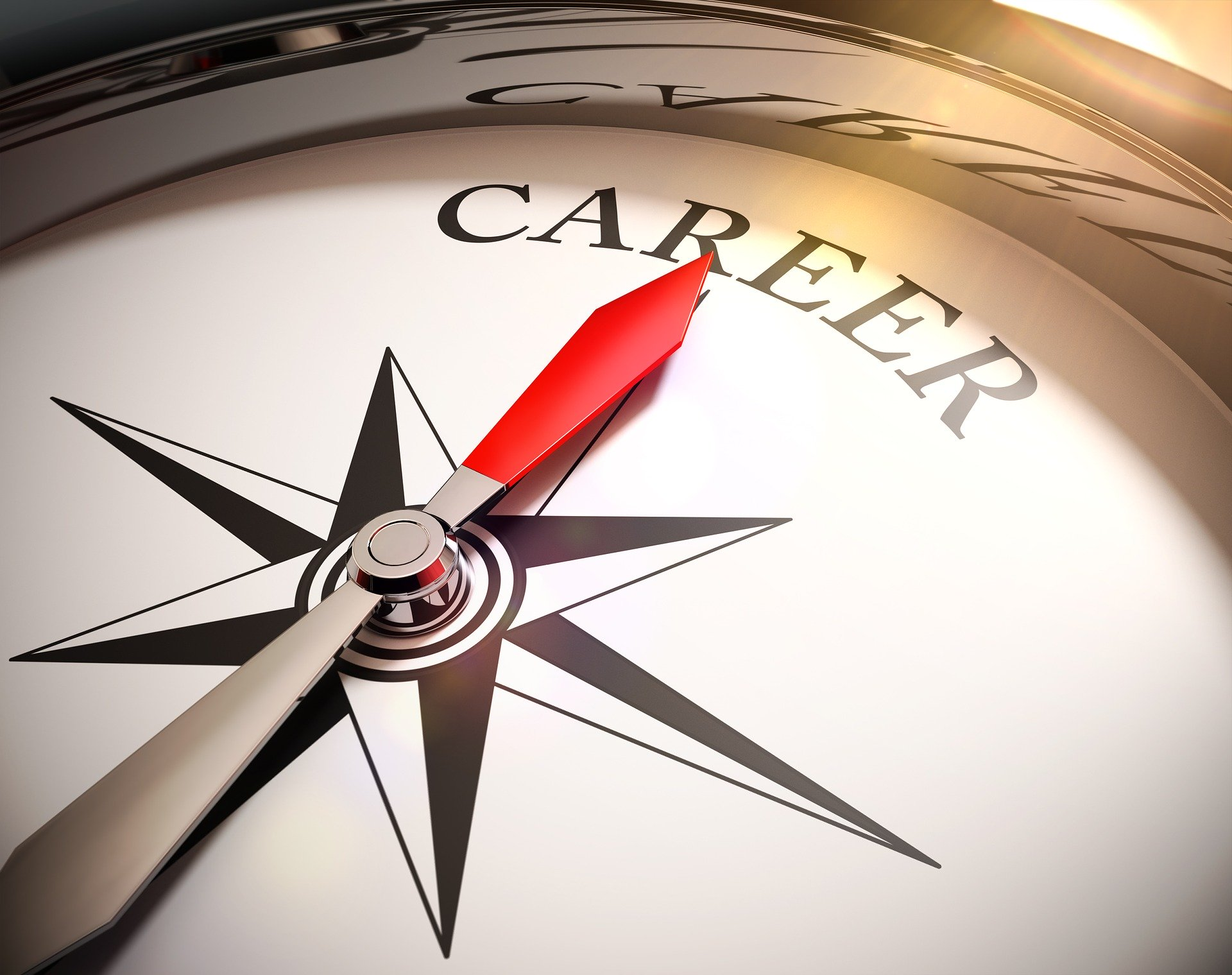 The Five Components of Career Durability
