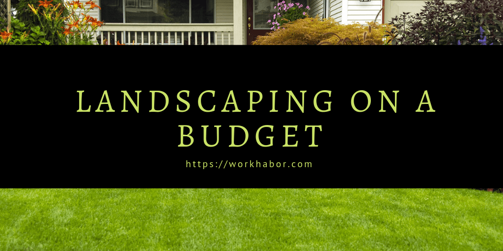 Landscaping On Budget