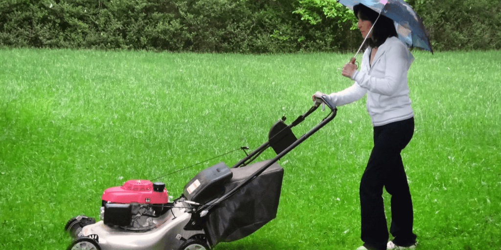 Can You Mow Wet Grass?