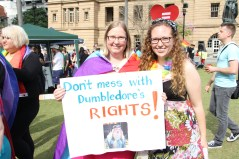 Marriage_equality_for_gay_Dumbledore
