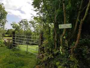 Mini- Greenway & Gort's Golden Mile
