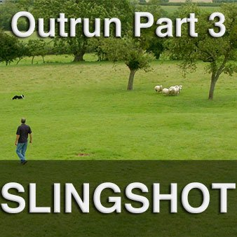 Widen your dog's outrun using our revolutionary slingshot technique