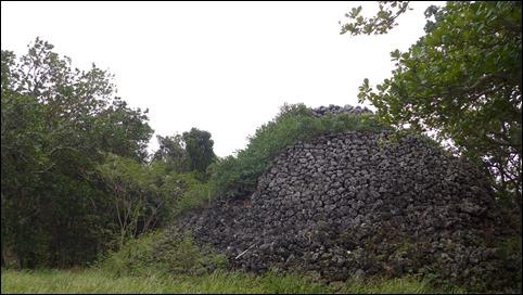 黒島 プズマリ