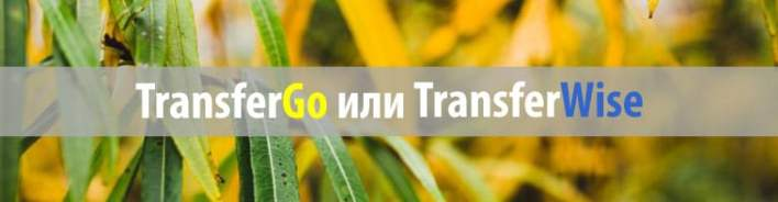 transfergo или transferwise