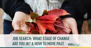 job search, change, job seeker