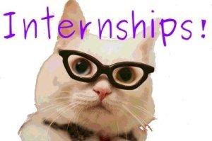 internships_cat