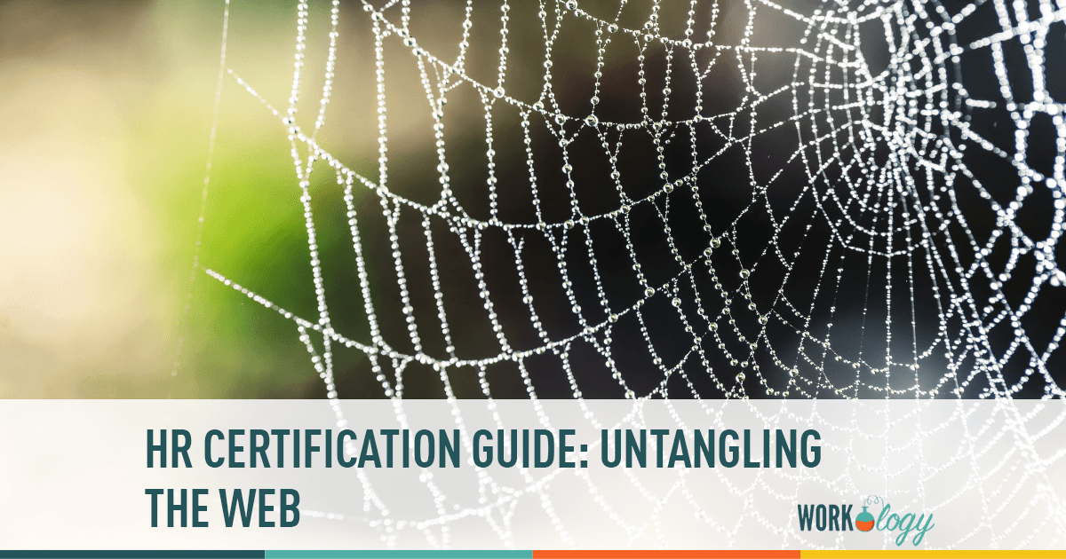 Hr Certification Guide Untangling The Web Workology