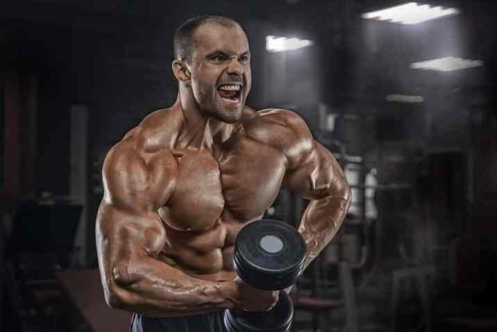 脂肪は筋肉に変わるか