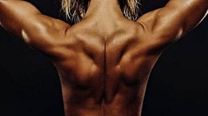 背中 筋肉