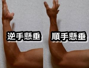 前腕回内 回外 上腕二頭筋
