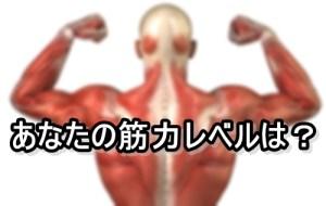 マーティン・バークハンの筋力レベルの指標