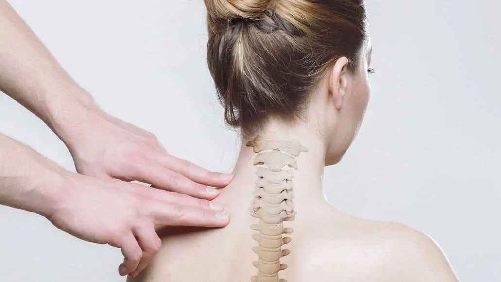 Woman's spinal discs