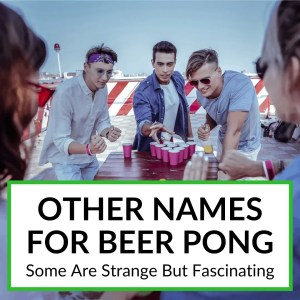 Other Names For Beer Pong