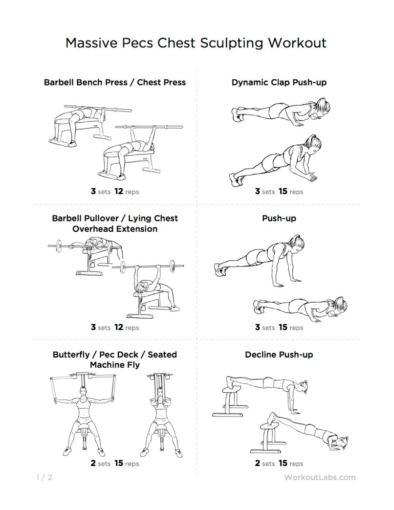 Gym Workout For Chest Pdf Eoua Blog