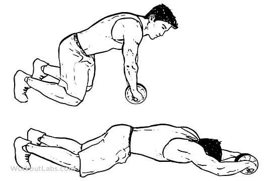 Ab Roller / Wheel Rollout / Kneeling Roll Extensions