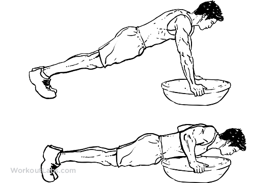 Bosu Ball Pushups  Pushups  WorkoutLabs