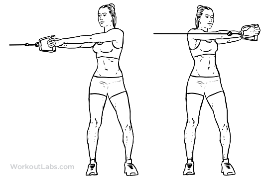 Cable rotation abs, workout routine abs