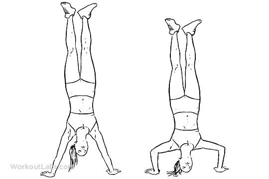 Handstand Workout Pdf